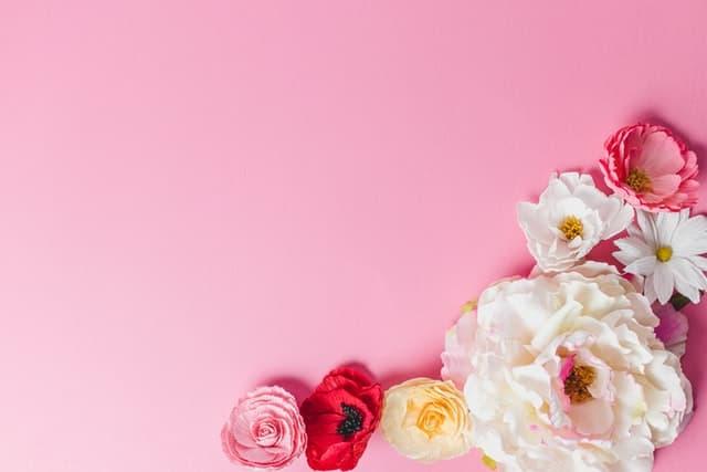 【風水で金運アップ】ピンク色の財布は恋愛運を招く、玉の輿にも効く