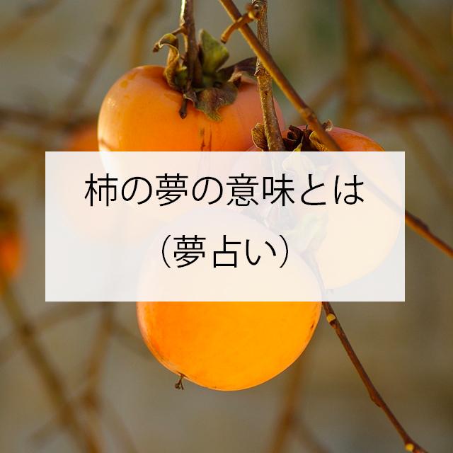 柿の夢の意味とは(夢占い)