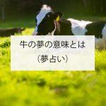 牛の夢の意味とは?(夢占い)