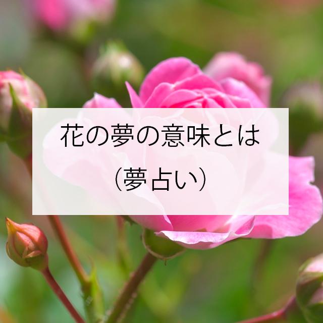 花の夢の意味とは(夢占い)