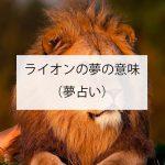ライオンの夢の意味とは?(夢占い)